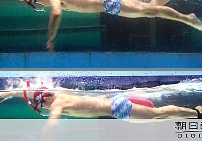 クロールのバタ足、速くなる効果なし むしろ水の抵抗増 - 一般スポーツ,テニス,バスケット,ラグビー,アメフット,格闘技,陸上:朝日新聞デジタル