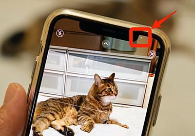 iOS 14では「カメラ」「写真」アプリの使い勝手が向上 細かな違いを確認した (1/3) - ITmedia Mobile