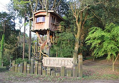 憧れのツリーハウスに宿泊!千葉・ホウリーウッズ久留里キャンプ村 | 千葉県 | トラベルjp 旅行ガイド