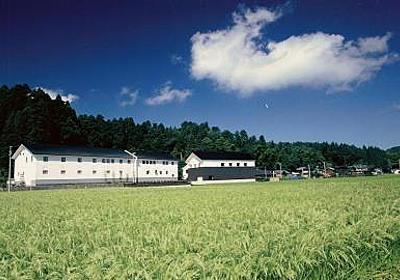 「亀の翁」「夏子物語」「清泉」久須美酒造 ~中越~   日本酒を愉しむ