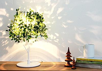ベッドサイドの「木漏れ日ランプ」に癒される(しかも便利)。 | TABI LABO