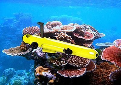 サンゴ礁荒らしのヒトデを駆逐するロボットが超優秀 | ギズモード・ジャパン