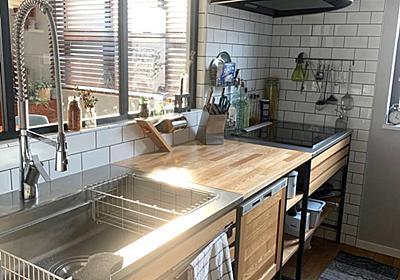 <暮らし>スポンジバイバイ。匂わない!汚れない!食洗機のお供シリコンスクラバー - My Midcentury Scandinavian home 〜北欧ミッドセンチュリーの家〜
