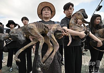 韓国の養犬業者ら、犬肉食べて気勢上げる 動物愛護団体のデモに対抗 写真16枚 国際ニュース:AFPBB News