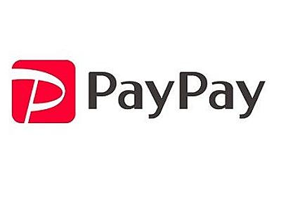 ビックカメラ、PayPay100億円特需に乗じて一部便乗値上げか : 市況かぶ全力2階建