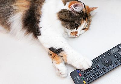 """Amazon「Fire TV Stick」へ無料で録画番組をスマホからをキャストしよう【自宅Wi-Fiの""""わからない""""をスッキリ!】 - INTERNET Watch"""