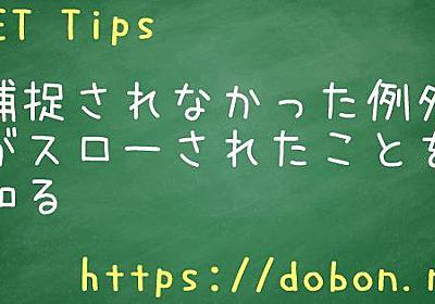 捕捉されなかった例外がスローされたことを知る - .NET Tips (VB.NET,C#...)
