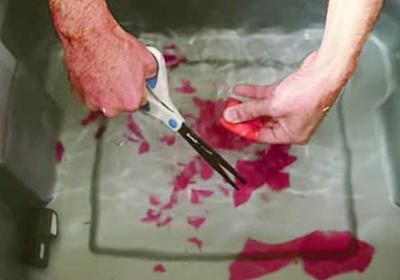 ガラスは水に浸せばハサミで切れる!?自宅でも試せる「ケモメカニカル効果」とは? - ナゾロジー