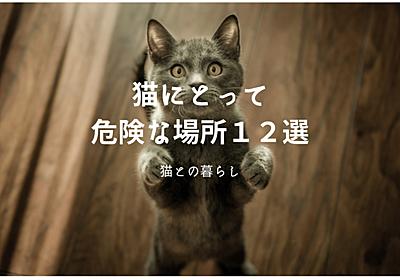 猫にとって危険な場所12選!!トラブルが起きる前に早めの対応を - ノル猫ラテちゃんの気ままBLOG