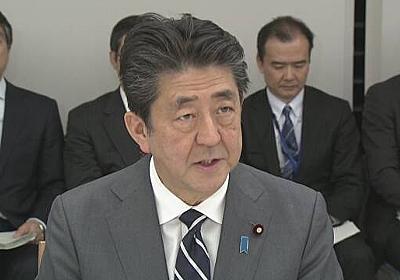新型ウイルス 専門家会議設置し対策強化 首相 | NHKニュース