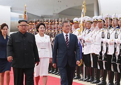 朝鮮半島の変化は不可逆的 - 山猫日記