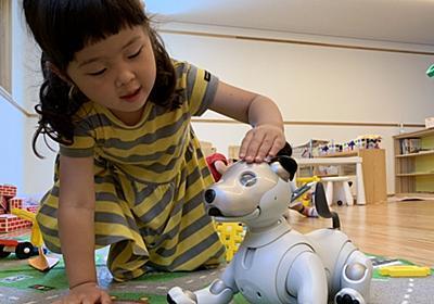 AI搭載新型aiboはこどもの成長にどう影響する?保育園で試験導入を実施 | Ledge.ai
