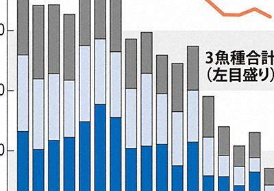 「1度の重み、全く違う」 温暖化で不漁 魚種の分布域変化   毎日新聞