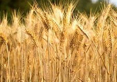 農耕の起源、さらに古く - サイエンスあれこれ
