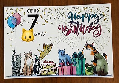 【祝!猫さん生誕祭】きーたん7歳になりました(ΦωΦ) - マダムあずきの意識低い系ブログ