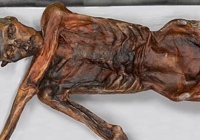 タトゥー進化論 01 人類最古の天然ミイラ〈アイスマン〉のタトゥーは何を語る? - VICE