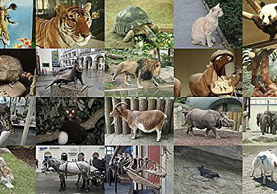 「あなたを動物に例えると?」にみんな何と答えているのか :: デイリーポータルZ