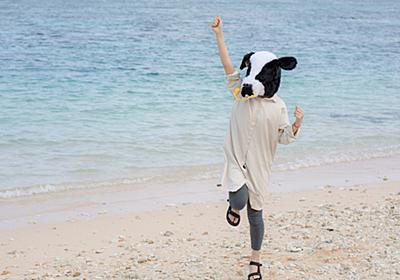 「夏が来るから海へ行こうよ」というリア充像の洗脳 - 竹ちゃんの世間に対するアレコレ