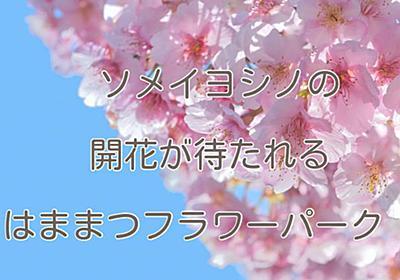 ソメイヨシノの開花が待ち通しい「はままつフラワーパーク」 - sannigoのアラカン日記