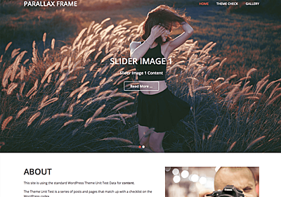 Parallax Frame – WordPress Theme Review