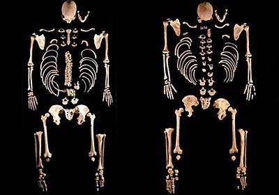 古代南欧で謎の「男性大量流入」、DNA調査で判明 | ナショナルジオグラフィック日本版サイト