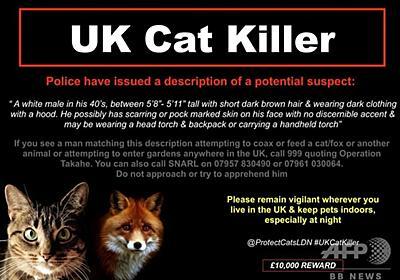 数百匹犠牲のロンドン「猫切り裂き魔」 正体は…、英警察が捜査報告 写真4枚 国際ニュース:AFPBB News