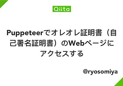 Puppeteerでオレオレ証明書(自己署名証明書)のWebページにアクセスする - Qiita