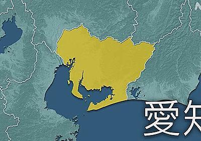 愛知県 新型コロナ過去最多の575人感染確認   新型コロナ 国内感染者数   NHKニュース