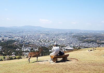 奈良では絶品よもぎ団子を買ってシカと絶景を見るべし~地元の人頼りの旅 in 奈良~ :: デイリーポータルZ