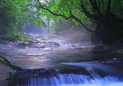 【渓谷】菊池渓谷|カメラとおでかけ