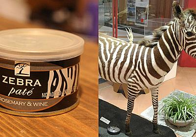珍味、シマウマの缶詰を食べる :: デイリーポータルZ