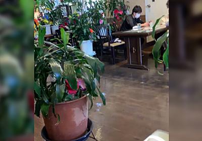名古屋のある喫茶店でアイスウインナーコーヒーを頼んだら、何の説明もなく反則級の商品が出てくる「嘘でしょ」「拍手しちゃいそう」 - Togetter