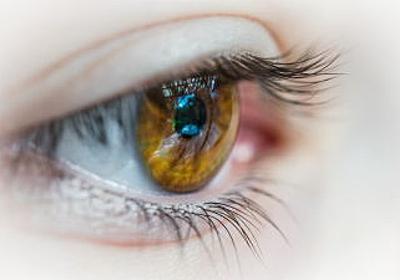 ブルーライトが網膜を傷つけ失明を引き起こすメカニズムが明らかに - GIGAZINE