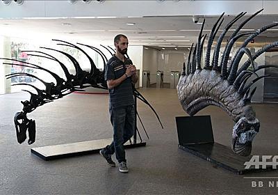 動画:新種の草食恐竜発見、背中に長く鋭いとげの列 パタゴニア 写真1枚 国際ニュース:AFPBB News
