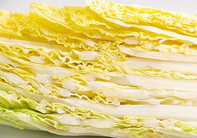 JA全農が投稿した『白菜のおいしい食べ方』に反響相次ぐ 「最高」「絶対おいしいやつ」 – grape [グレイプ]