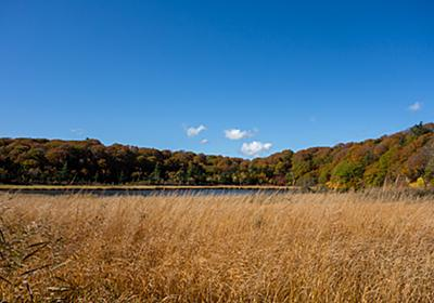 秋に染まっていく八幡平大沼 - t0zawa's blog
