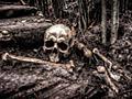 世界一プレイヤーが多いMMORPGで流行した「死の伝染病」からパンデミックに対処するヒントを得られる可能性 - GIGAZINE