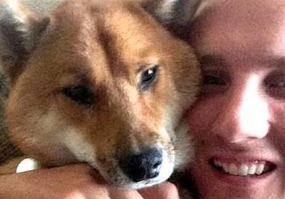 戦地に赴任中、ガールフレンドに最愛の犬を売りとばされてしまった米軍兵士、努力の甲斐かいあって愛犬が戻ってきた! : カラパイア