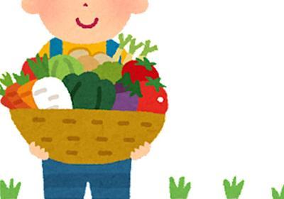 野菜をメルカリで売れば匿名配送で身元もバレないのでJAから怒られないし嫌がらせも発生しないので現代の闇市 - Togetter