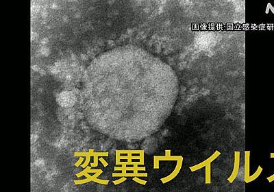 都内の女の子 変異ウイルス感染 海外渡航歴ない男性から感染か | 新型コロナウイルス | NHKニュース