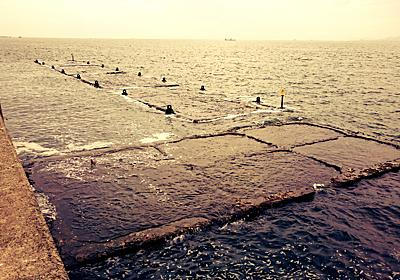 【大阪北港夢洲】北港スリットでの釣りが楽しすぎて毎日が辛い | くろこう.net
