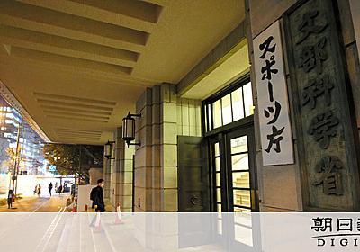5歳児の教育プログラム 文科省が作成へ 慎重論も:朝日新聞デジタル