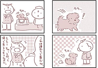 【犬マンガ】連れてって - こぐま犬と散歩〜元保護犬の漫画日記〜