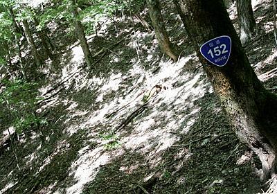 """国道152号線の""""もうひとつの未開通区間""""を見に行った :: デイリーポータルZ"""