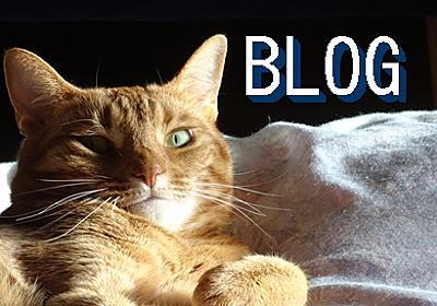 「読者になるボタン」を簡単に貼り付け - 暮らしと勉強 Bettyのブログ