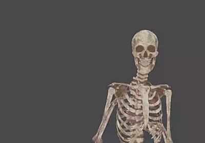 大学で解剖を教えている先生「自分を標本にしちゃえばよくね?」→饒舌な骸骨先生による講義動画が爆誕 - Togetter