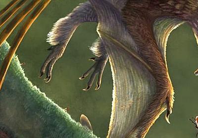 翼竜にあらず! 前代未聞の「空飛び恐竜」その名前はわずか1文字!(安田 峰俊) | ブルーバックス | 講談社(1/4)