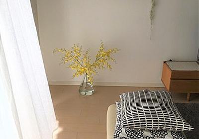 お気に入りのリネンカーテンについて「ものごと」 : Rinのシンプルライフ〈50代からの暮らしの整え方・小さな平屋暮らし〉
