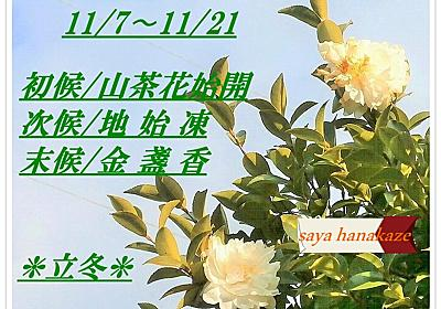 立冬/early winter/二十四節気 - 花風 咲彩の四季折々