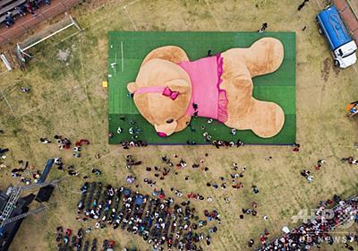 全長20m! 世界最大のテディベア、ギネス認定 メキシコ 写真5枚 国際ニュース:AFPBB News